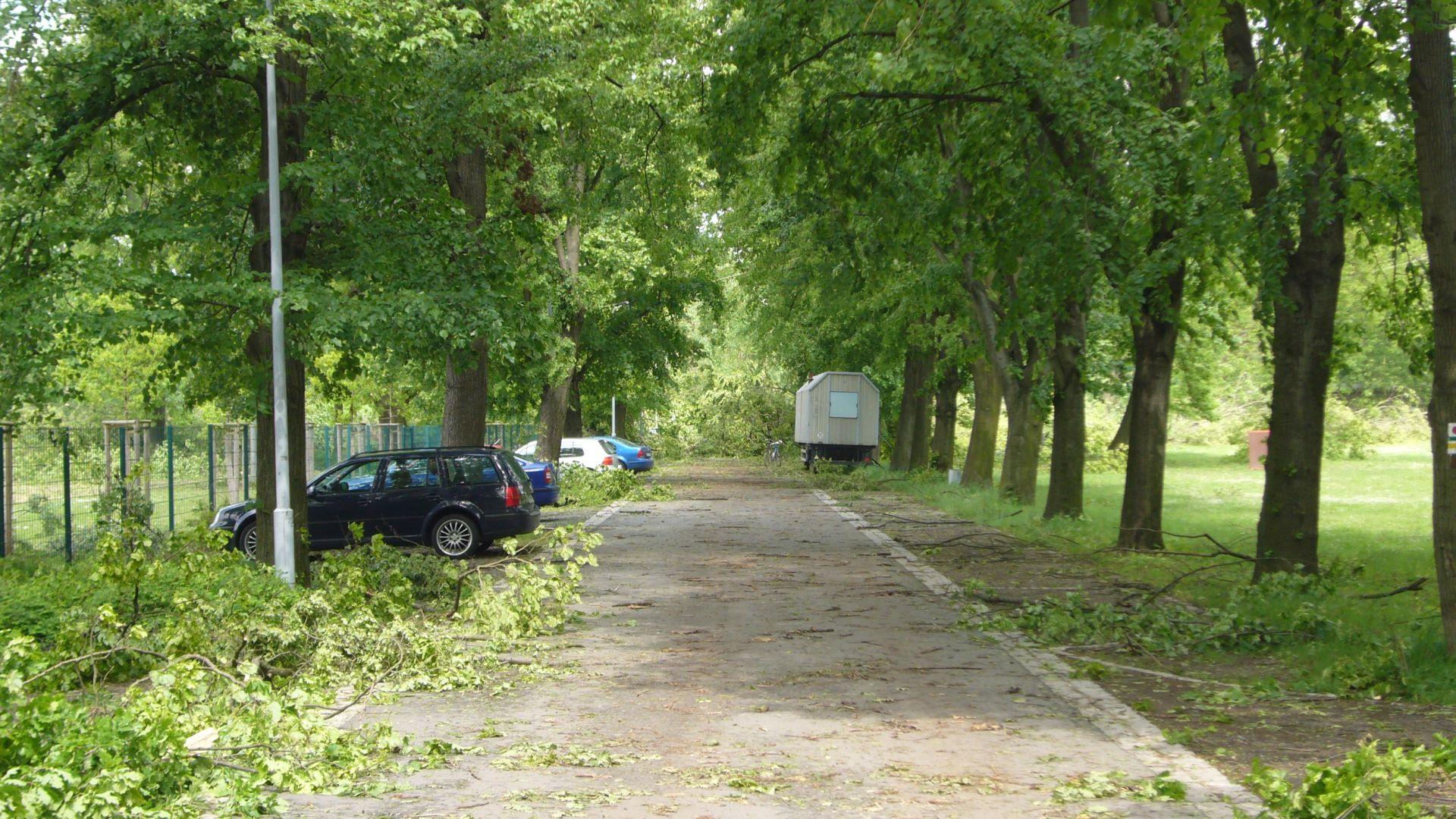 http://img8.abload.de/img/tornadogrossenhain011i94g.jpg